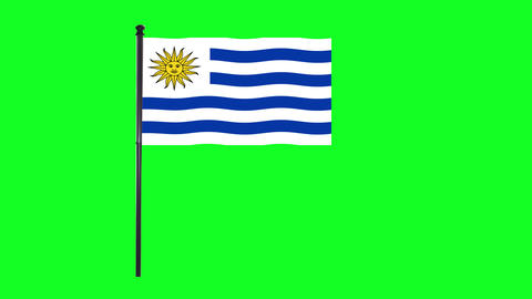 4K Uruguay flag is waving in green screen Animation