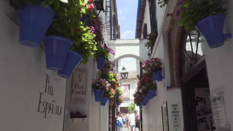 Cordoba, Spain - May 20, 2019: tourists in the alley of flowers in Cordoba Footage