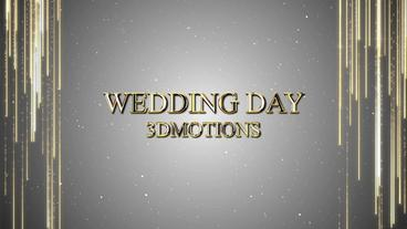 Wedding Cinematic Opener After Effects Template