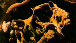 Abstract moving fluid in black and orange colors Live Action