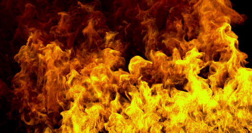 realistic fire flames burn movement on black background loop seamless Live Action