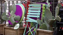 Europe Italy Liguria Savona 015 cactuses & colorful chairs on terrace Footage