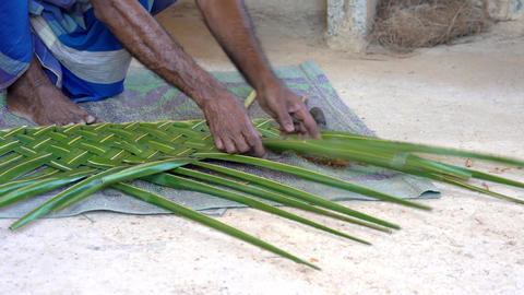 Galle, Sri Lanka - 2019-04-01 - Thatch - Man Demonstrates How to Weave Leaves Live Action