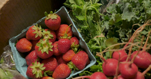 Fresh organic seasonal produce from a community supported agriculture box including strawberries, Footage
