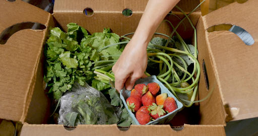 Hand going through a box of fresh organic, seasonal fruit and vegetables including ripe Footage