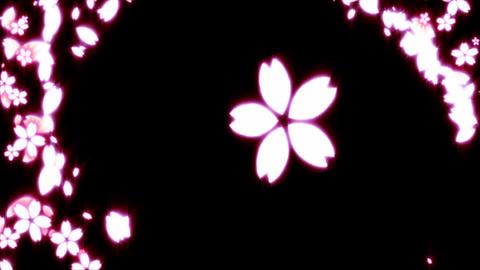 Sakura animation Animation
