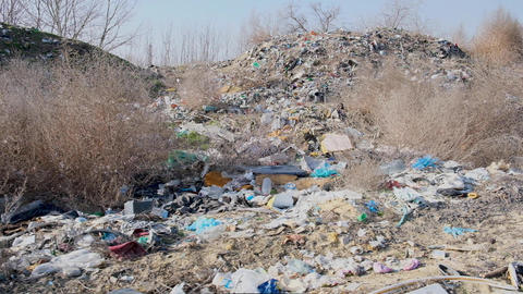 large landfill of rubbish in the midst of wildlife Archivo