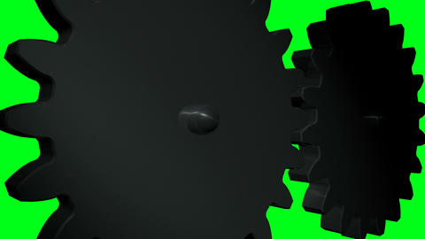 Gears 6 Animation