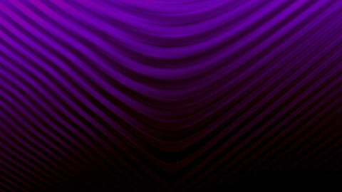 Curved lines background PURPLE Animation