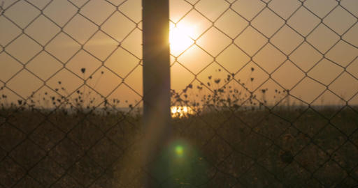 Sunset behind the wire mesh Live Action