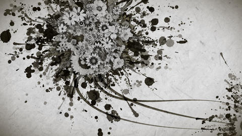 Monochrome flowers and ink paint strokes paper texture background Animation