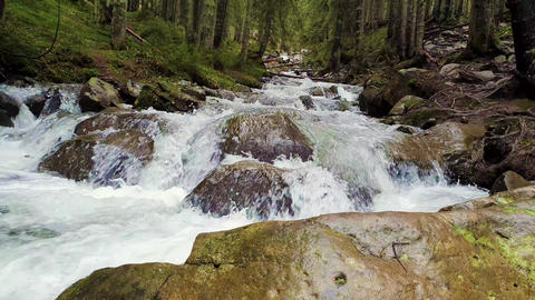 Great scenery view as river flowing through the mountain hills wild nature. Prut river in Carpathian Live Action