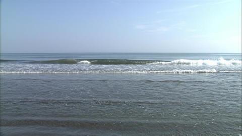 海 波 ビデオ