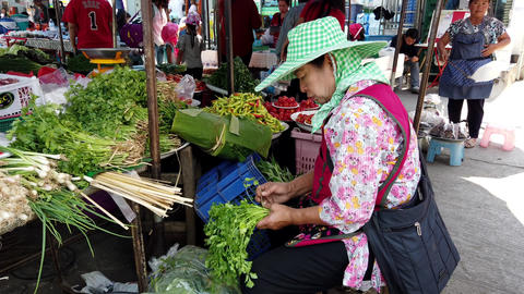 Chiang Saen, Thailand - 2019-03-10 - Woman Trim Parsley Bunch at Market Footage