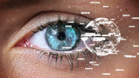 Close-up of blue eye looking a connexion of digital globe Animation