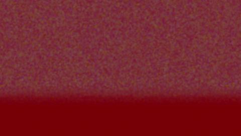 Mov30 noiz bg loop 06 CG動画
