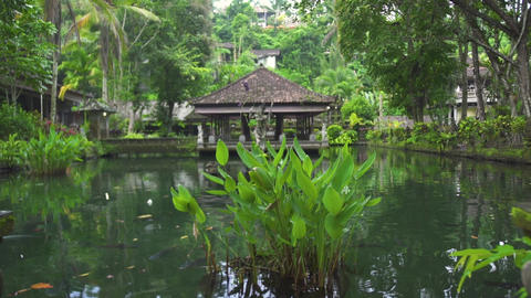 Indonesia god statue in water pond at Bali temple, Indonesia. Traditional Live Action
