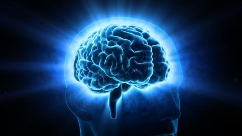 Brain Head 19 2 D1bB 4k Animation