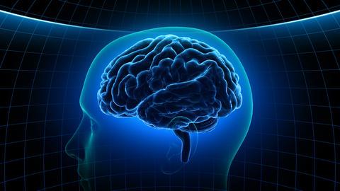 Brain Head 19 2 C1dB 4k Animation