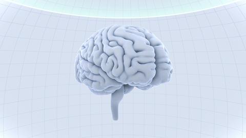 Brain Head 19 2 D1dW 4k GIF