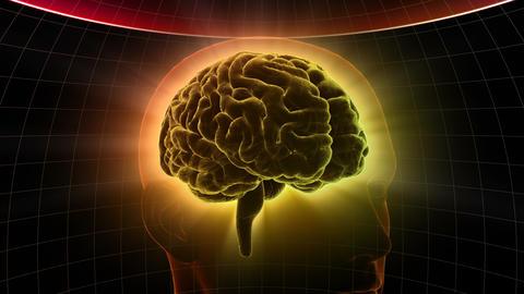 Brain Head 19 2 D1dD 4k Animation