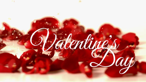 Valentines day text with red flower background and water drop Animation