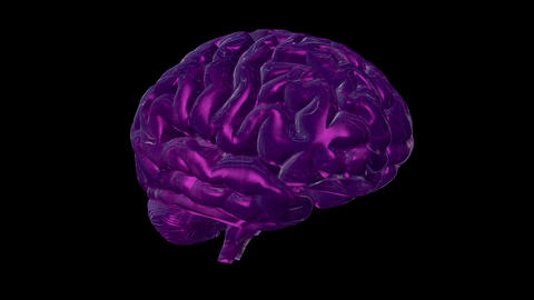 Cyclically rotating computer model of the human brain Videos animados