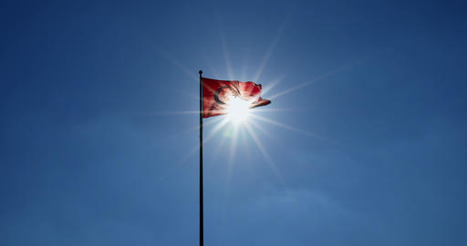 Turkish flag waving at sky with sun. Turkey country flag flowing in the wind in front of sun Footage