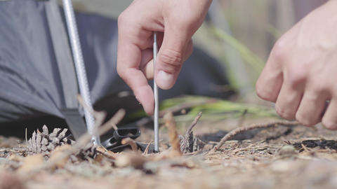 Male hands putting tent up close-up. Concept of camping. Leisure and journey to Footage