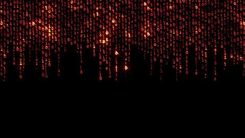 Binary Fashion Wall 1 Stock Video Footage