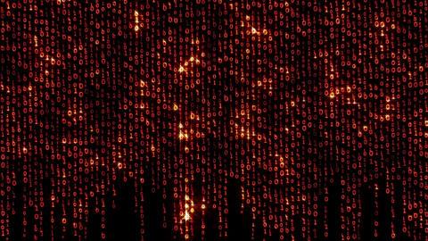 Binary Fashion Wall 1 Animation