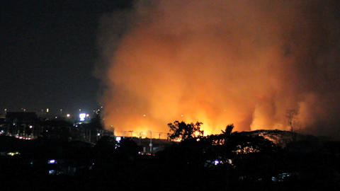 Fire Burns Trees And Fields At Night Stock Video Footage
