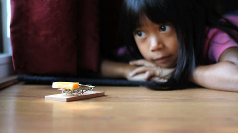Girl Using A Mousetrap Footage
