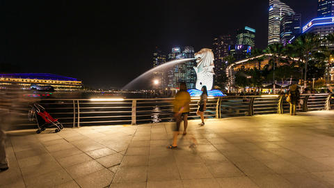 Timelapse - Singapore Merlion at night Stock Video Footage