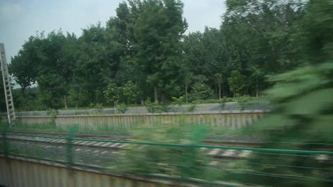 Dense forest scenery outside window in rural... Stock Video Footage