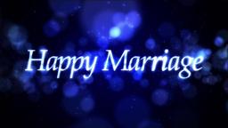 Happy Marriage ループ ウェディング 素材 Animation
