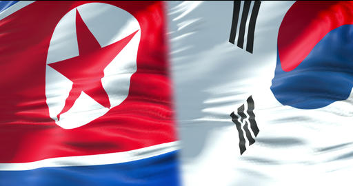 half north korea flag and half south korea flag, waving flag movement, crisis state diplomacy and Live Action