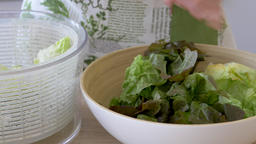 Woman takes a lettuce from the salad spinner and puts it into a bowl Archivo