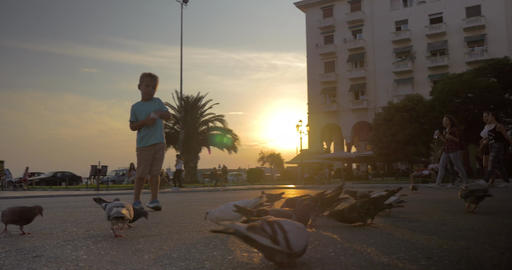 Children and pigeons in the street at sunset Footage