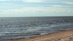 bottle of rum on the deserted seashore Footage