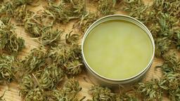Cream medicinal cannabis hemp and cannabidiol CBD harvested dried of seeds Footage