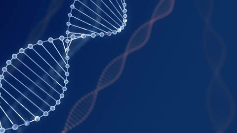 Abstract blue glittering DNA double helix with depth of field. Animation of DNA Footage