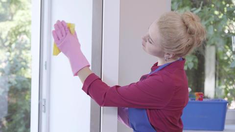 Cute young woman having fun cleaning window with window rag. Housekeeping Footage