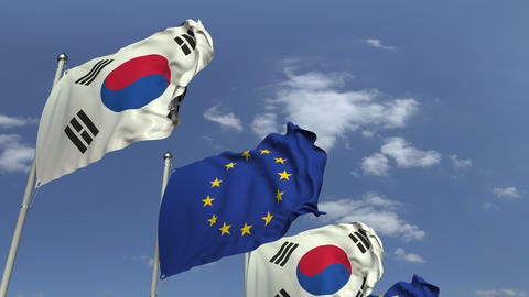 Many flags of South korea and the European Union EU, loopable 3D animation Footage