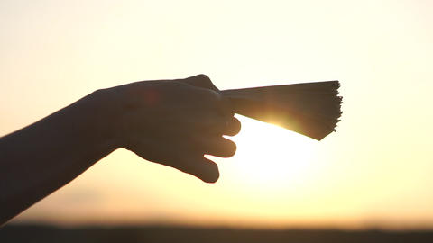 Banknotes in the female hand against the sunlight at sunset, slow motion Footage