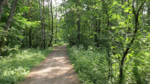 bicycle rides along narrow path past bushy trees in park Footage