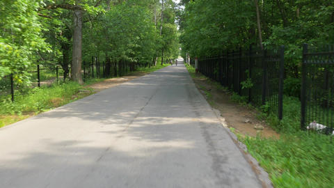 speeding cycle rides along asphalt lane past bushy forest Footage