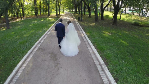 Newly wedded couple walking in green park, aerial view Footage