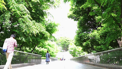 People who walk the tree-lined streets of the city (low angle) Footage