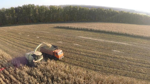 Flying over combine and truck harvesting crops Footage